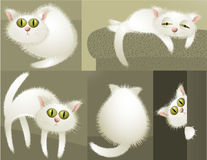 White cat character Royalty Free Stock Photography