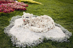 White cat flower sculpture – Flower show in Ukraine, 2012. Sculpture of the white cat on the green grass made of flowers at the 57th annual flower exhibition Royalty Free Stock Photography