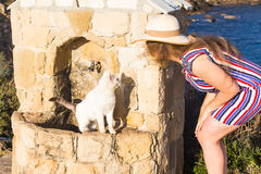 White Cat homeless and Woman playing with him Outdoor Lifestyle and Friendship helping concept Stock Photography