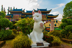 White cat monument is the Kuching South City Council Cat Statue. Sarawak Malaysia. His monument is a landmark for Kuching city and popular photo spot with Stock Images