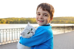 White cat sitting on hands of a boy. Royalty Free Stock Photo