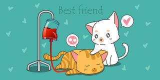 White cat is taking care its sick friend. royalty free illustration
