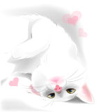 white cat for Valentine's day greeting card Royalty Free Stock Photo