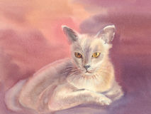 White cat watercolor illustration. Illustration with a cute white cat. Watercolor. Hand drawn Royalty Free Stock Photos