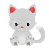 White cat  on white background Stock Photos