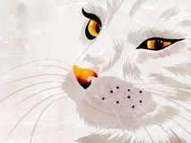 White cat with yellow eyes Royalty Free Stock Images