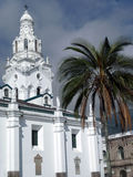 White Cathedral with a Palm Tree Royalty Free Stock Images