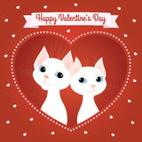 White cats couple heart red card Stock Images