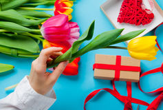 White caucasian female hand holding yellow tulip near things for royalty free stock images