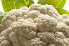 White cauliflower close up Stock Photo