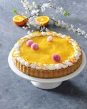 Baked sponge cake with tangerine mousse garnished with cream and daisy edible flowers stock image