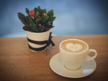 White Ceramic Cup Royalty Free Stock Image