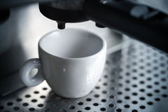 White ceramic cup in espresso coffee machine Royalty Free Stock Photos