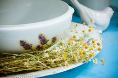 White ceramic kitchenware and chamomiles Royalty Free Stock Photography