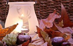 White Ceramic Lamp With Deer Cutout Near Leaves Stock Images