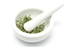 White ceramic mortar and pestle with rosemary Royalty Free Stock Image