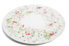 White ceramic plate with floral pattern. Stock Image