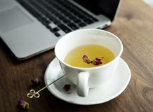 White Ceramic Teacup on Saucer Beside Laptop Computer stock image