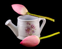 White ceramic watercan, sprinkler, with pink lotus, water lily flowers, close up Royalty Free Stock Photography