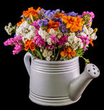White ceramic watercan, sprinkler, with vivid colored flowers, orange tagetes, purple wild flowers, close up Royalty Free Stock Images