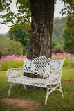 White chair under tree Royalty Free Stock Image