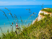 White chalk cliffs and Beachy Head Lighthouse as blurred background Stock Photography