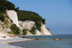 White chalk cliffs on rügen Royalty Free Stock Image