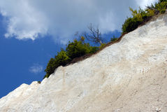 White chalk cliffs on rügen Royalty Free Stock Photo