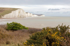 The white chalk cliffs in the Seven Sisters Country Park Stock Photos