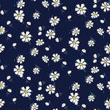 White chamomile flowers seamless vector blue pattern. vector illustration