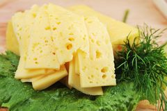 White cheese Stock Images