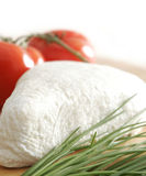 White cheese. Some green onion and tomatoes in background Royalty Free Stock Images