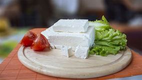 White Cheese and lettuce Stock Image
