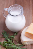 White cheese and milk Royalty Free Stock Photo