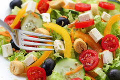 White cheese salad Royalty Free Stock Photography