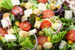 White cheese salad Royalty Free Stock Photo