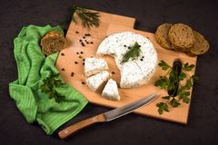 White cheese with spices. The white cheese dairy product with dill and parsley is on cutting board with some bread and spices on gray background Stock Photos