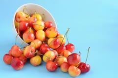 White Cherries Stock Photography