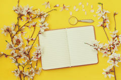 White cherry blossoms tree and open notebook Stock Photography