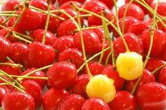 White cherrys Stock Photo