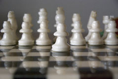 White chess Stock Images