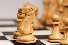 White Chess Knight in Opening Game. A white chess knight in the traditional Staunton design moves out over the pawn line in the opening part of a game Royalty Free Stock Image
