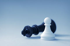 White chess pawn and black king Royalty Free Stock Photos