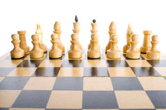 White chess pieces in start position Stock Images