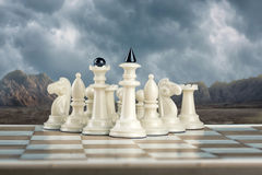 White chess team Stock Photography