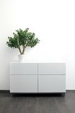 White chest of drawers with flower pot in bright interior Stock Photos