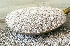 White Chia Seeds on Brass Spoon. Focus on front seeds Stock Photography