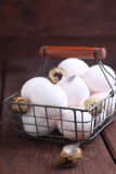 White chicken and brown quail eggs Stock Photos