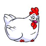 White chicken cartoon illustration Royalty Free Stock Images