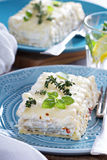 White chicken cheese lasagna Royalty Free Stock Image